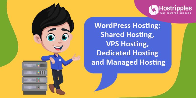 WordPress Hosting: Shared Hosting, VPS Hosting, Dedicated Hosting and Managed Hosting, Hostripples Web Hosting