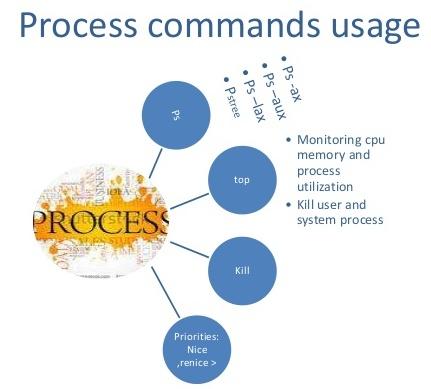 process commands