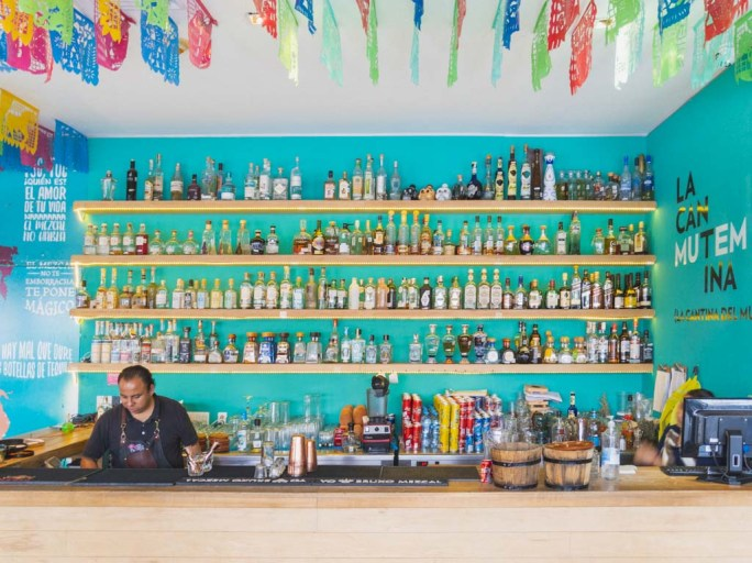 An outdoor mexican bar features pale wood shelves against a turquoise wall, housing a number of different tequila and mezcal bottles.