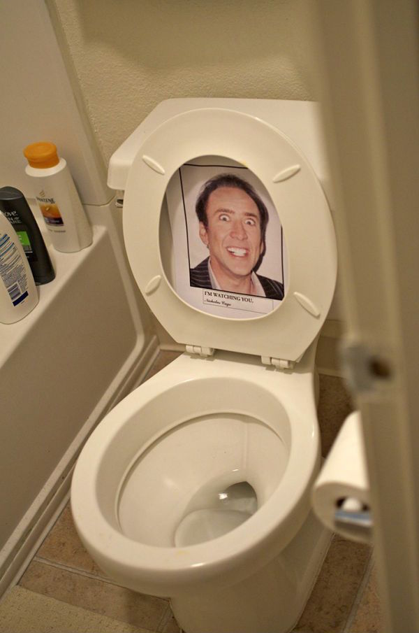 toilet-terror
