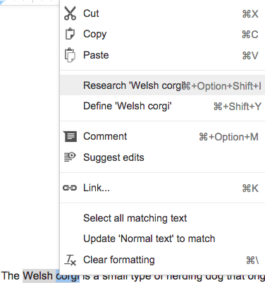 The Research Tool in a Google Doc