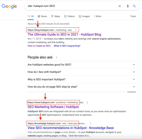 Site search Google example