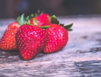 Flavonoids and Brain Health. Podcast with Dr. Pamela Maher