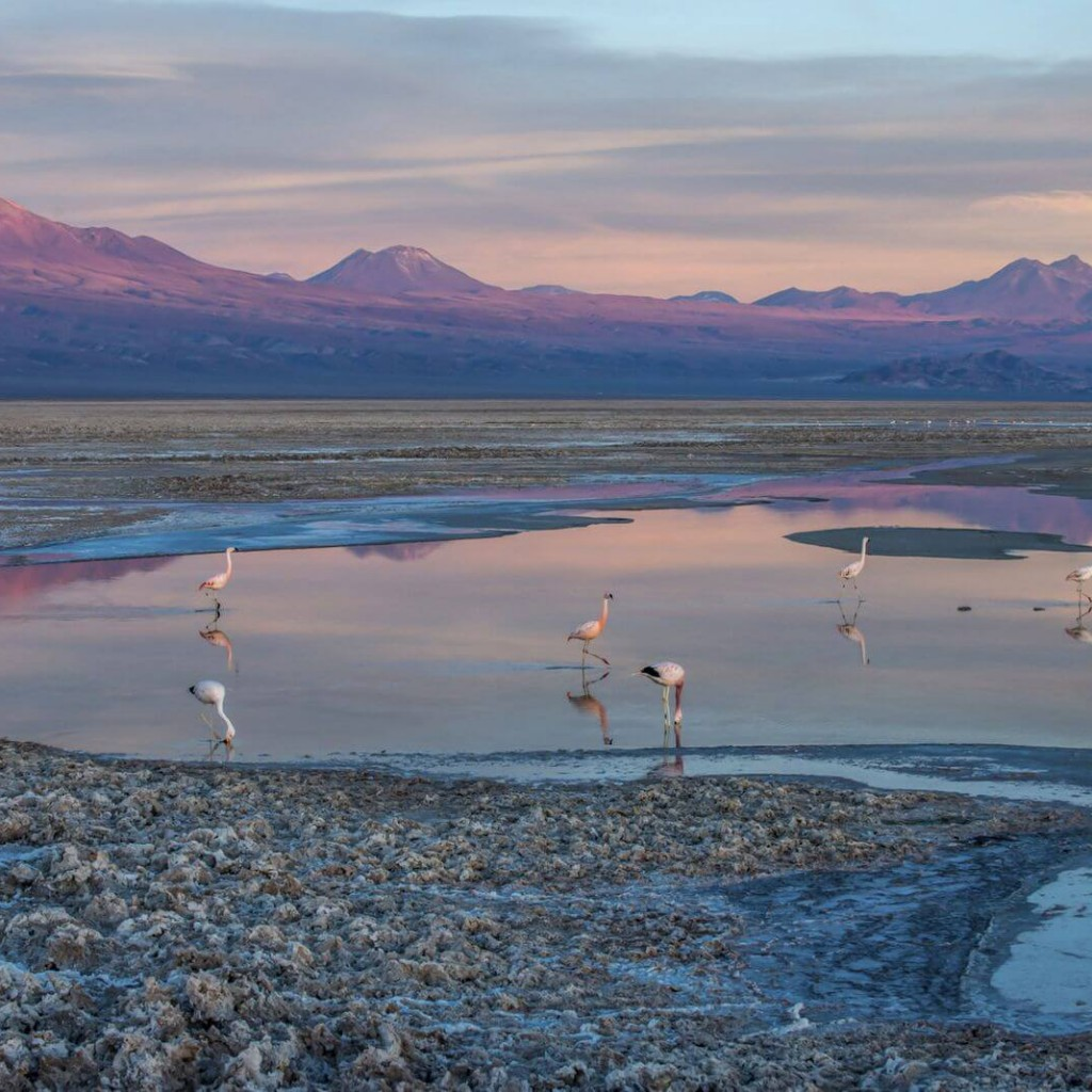 pacote-para-o-deserto-do-Atacama