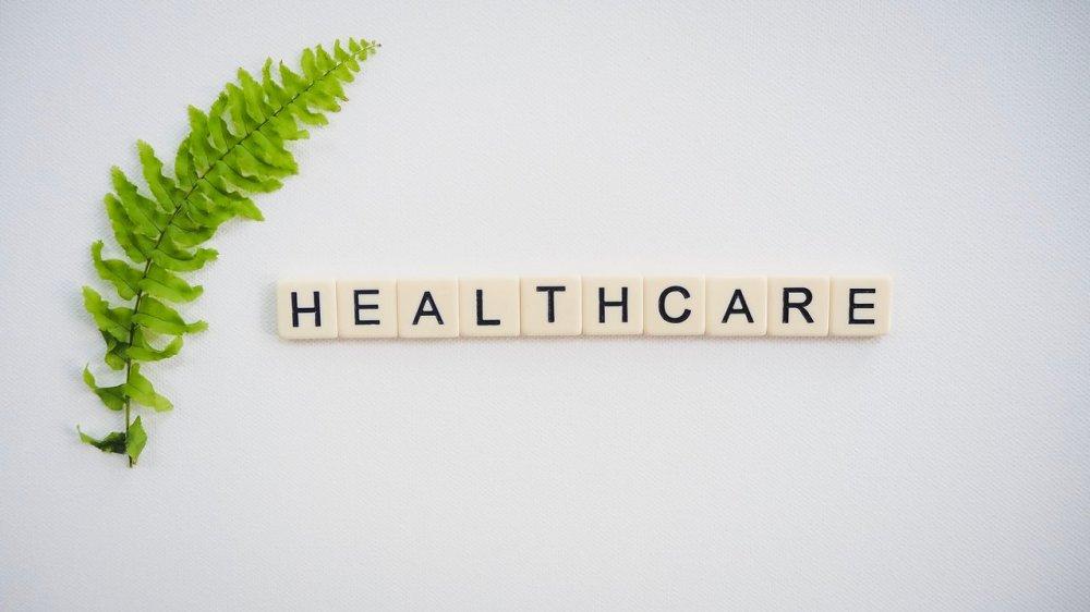 folha de samambaia com letreiro healthcare, tópico essencial para trabalhar em casa