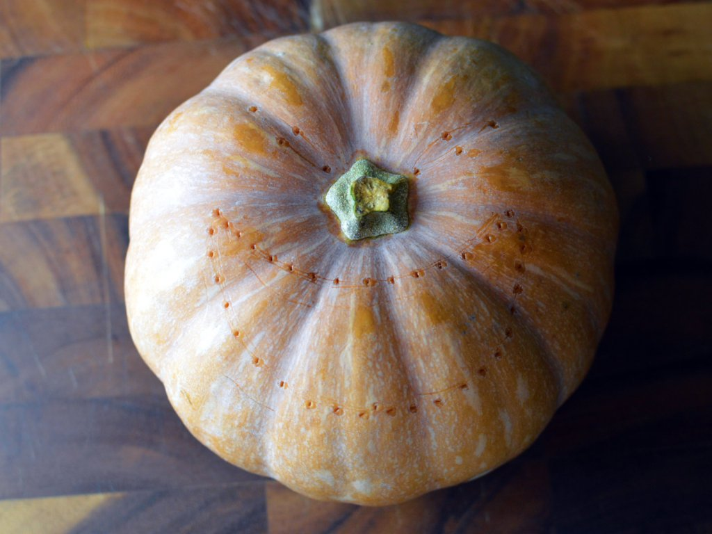 how to carve a pumpkin for halloween - Mark where to cut