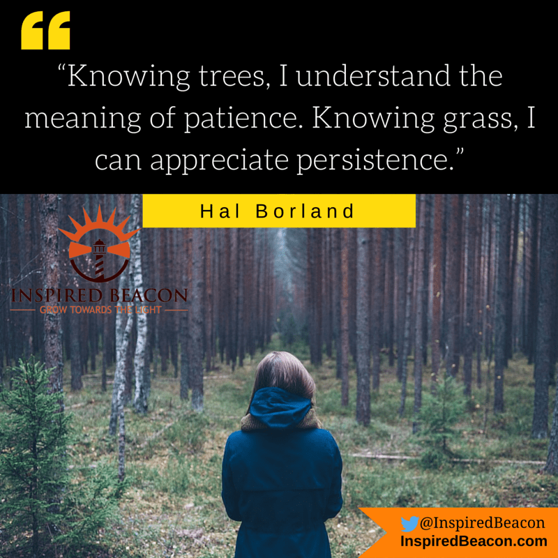 """Knowing trees, I understand the meaning of patience. Knowing grass, I can appreciate persistence.""--Hal Borland"