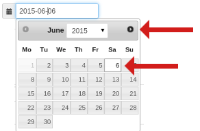 Screenshot of the date-picker calendar