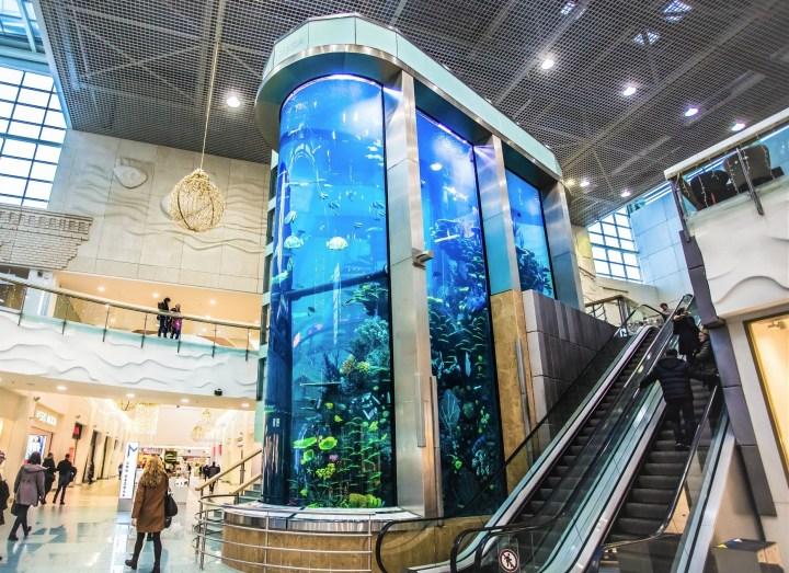 Kaunas Mega Aquarium