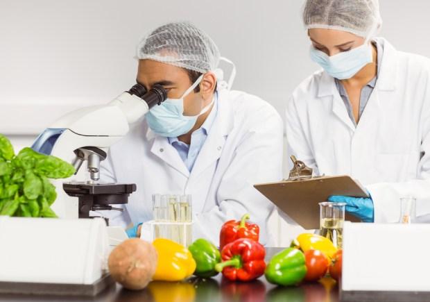 Engenharia de Alimentos, IPOG, Alimentação, Engenharia de Segurança dos Alimentos