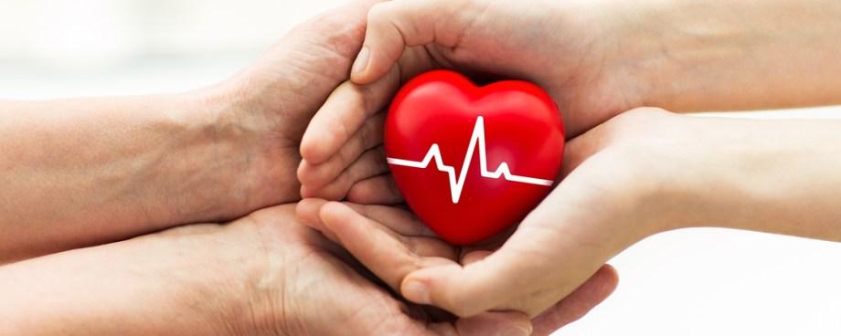 transplantes e doações de órgãos lei