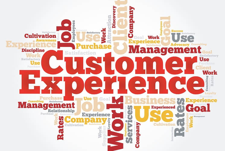 Who owns Customer Experience in your organization?