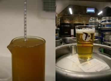 Jacaranda Visit Langham Brewery_0003