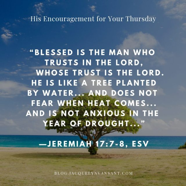 """Blessed is the man who trusts in the Lord, whose trust is the Lord. He is like a tree planted by water, that sends out its roots by the stream, and does not fear when heat comes,     for its leaves remain green, and is not anxious in the year of drought, for it does not cease to bear fruit."" —Jeremiah 17:7-8, ESV"