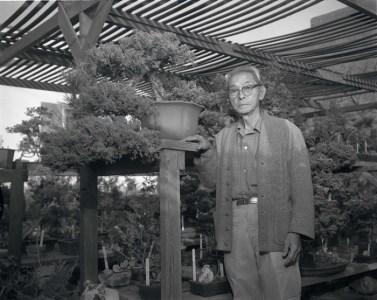 Frank Nagata and bonsai class at Alpine Baika Bonsai Nursery, Los Angeles, California, 1964. Photo by Toyo Miyatake Studio. Japanese American National Museum, Gift of the Alan Miyatake Family.