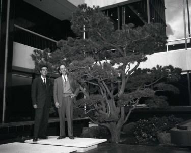 Nunokawa Japanese garden in Occidental Center, Los Angeles, California, April 10, 1965. Photo by Toyo Miyatake Studio. Japanese American National Museum, Gift of the Alan Miyatake Family.