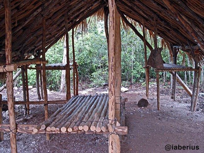 interior campamento chiclero