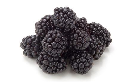 Blackberries-on-white-006