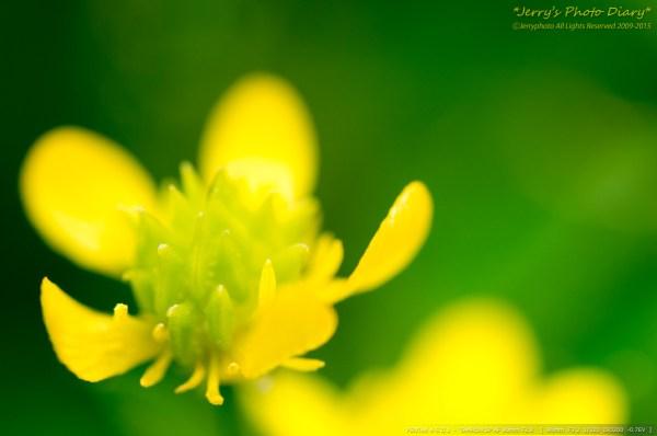 _Blog-20150414-230120