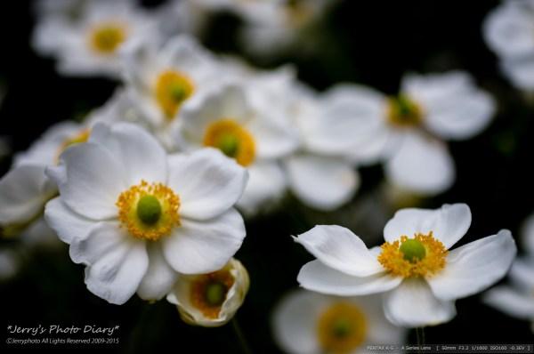 _Blog-20151025-141342