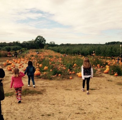 6 Family Friendly Jersey Shore Halloween Destinations