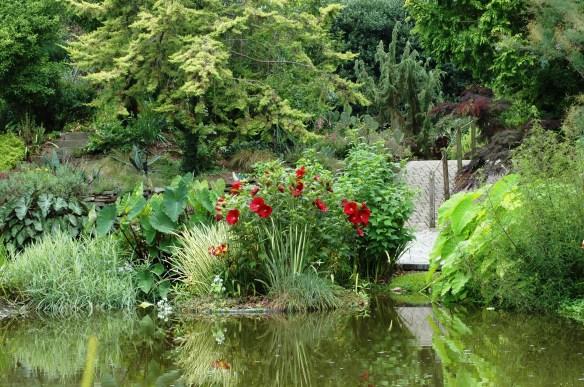 The Sunken Aquatic Garden