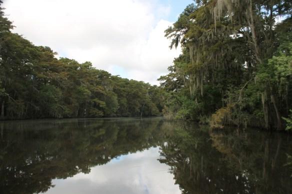 Shangrila bayou view