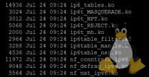 IPv6 modules in SSH console