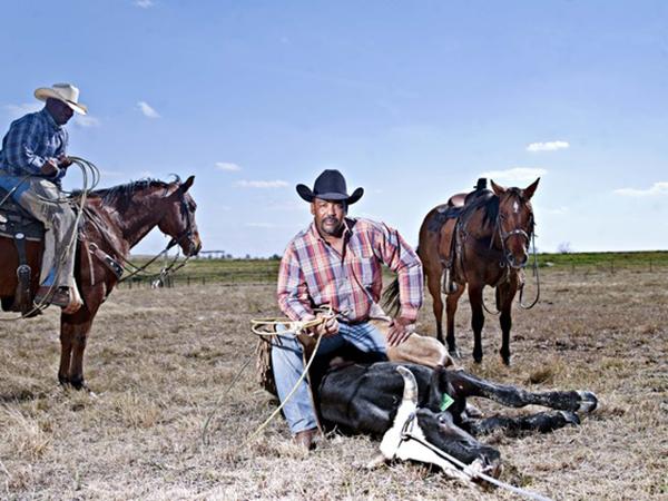 The Forgotten Cowboys by John Ferguson