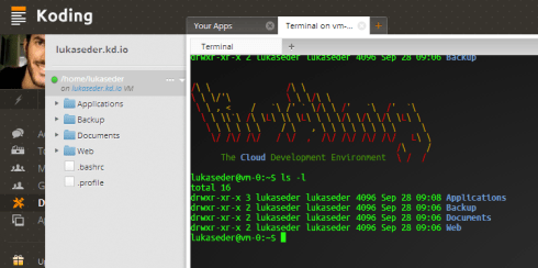 VM with a terminal on Koding