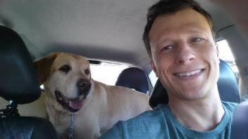 1536868264-cao-cachorro-pet-na-pan-cachorros-facebook