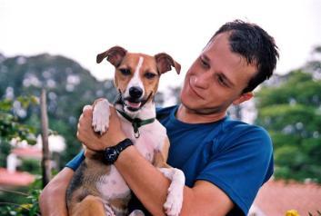 2049947960-cao-cachorro-pet-na-pan-cachorros-facebook