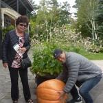 hokkaido autumn tour 15 403a