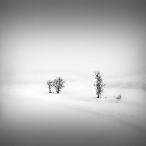 Catharsis IV - Future Memories © Julia Anna Gospodarou 2013