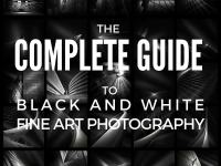 The Complete Guide to Black and White Photography