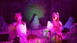 Les œufs de dragon éclos