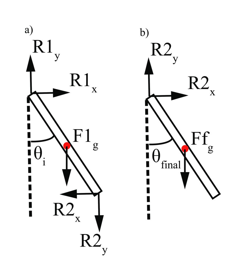 compound pendulum Full-text (pdf) | the compound pendulum is a standard topic in most intermediate physics courses and this article describes its use to determine the gyradius and center of mass position of olympic class sailboat hulls by measuring the oscillation period on two pivot points a known distance apart.
