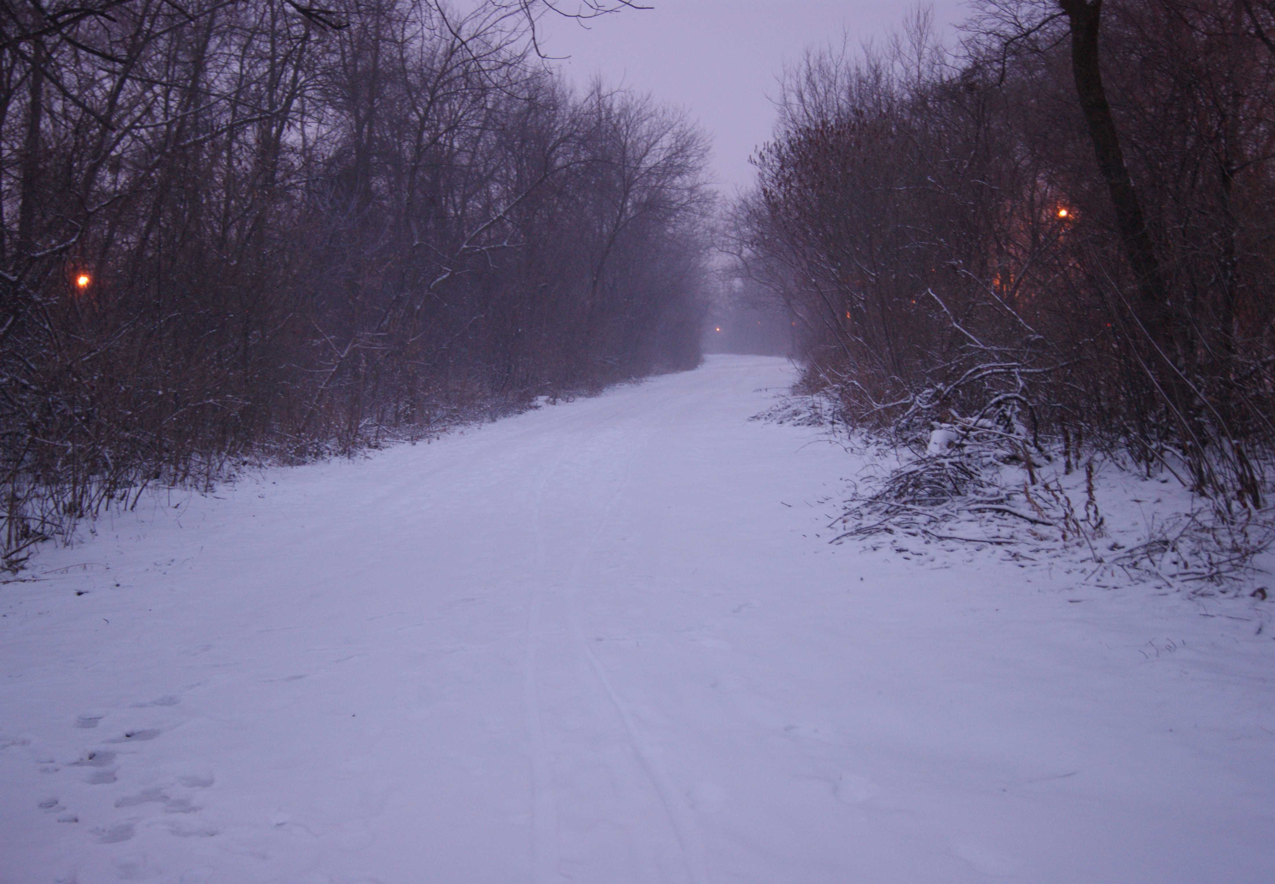 Snowy path in Shorewood, Wisconsin