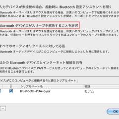 Bluetoothの詳細設定