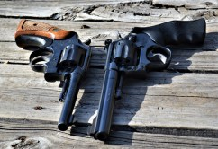 Two .22 caliber revolvers