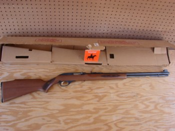 Marlin .22 LR rifle next to its box on a sheet of plywood showing one flaw in Florida's latest gun control referendum