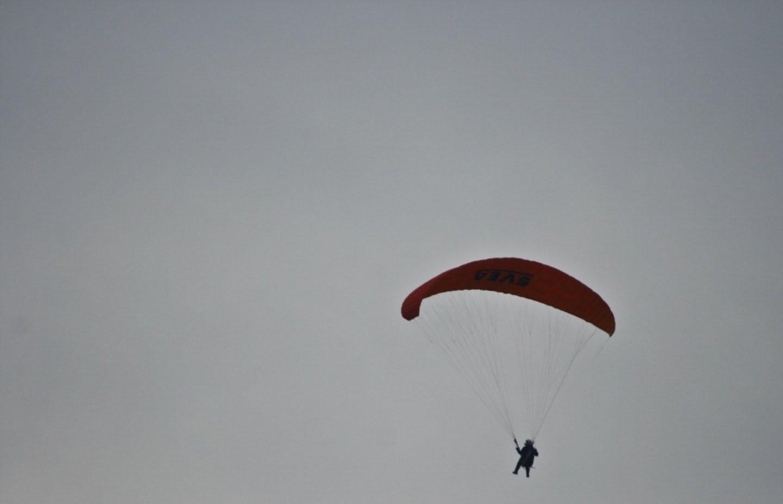 Padalec nad Laufarijo