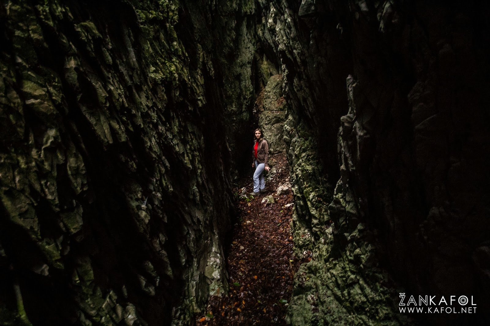 Snežna jama pod Štrangelom