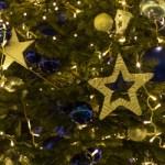 «Волшебное путешествие в Рождество», прогулка №2