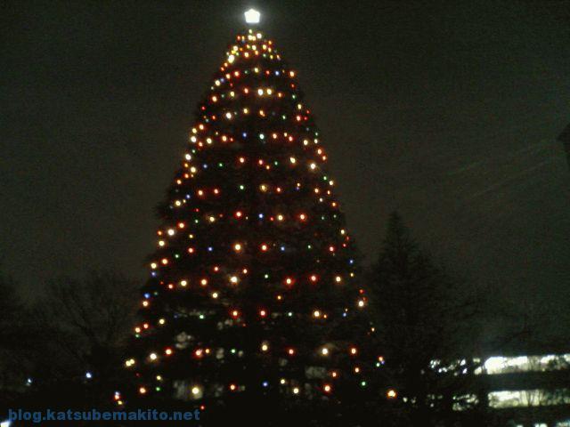 青学2006 クリスマスツリー
