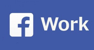 facebook-at-work-business