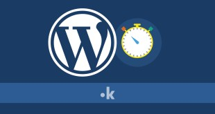 come installare wordpress in 1 minuto