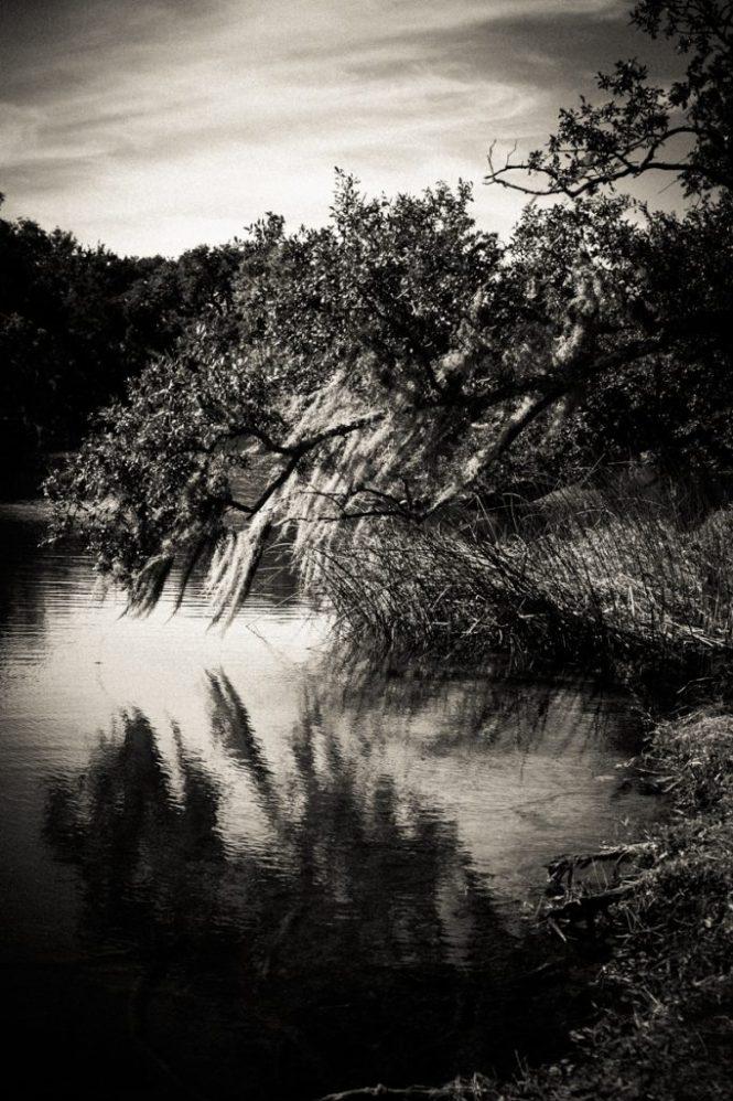 KellyWilliamsPhotographer_NewOrleans_ParkOverlay-1