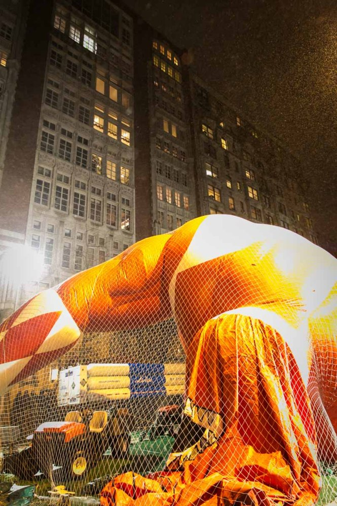 Macy's Thanksgiving Day Parade Inflation Celebration, by Kelly Williams, Photographer