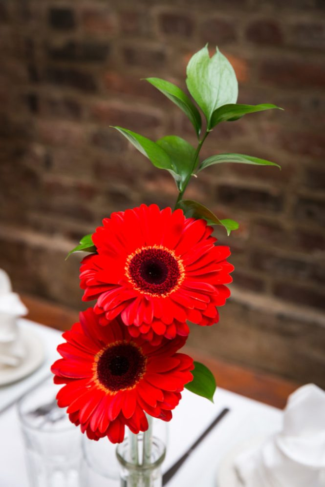Gerber daisy flower centerpiece for a Scottadito wedding